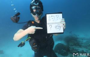 【涛岛图片】#我的2017#泰国涛岛小司机叫你来潜水啦!