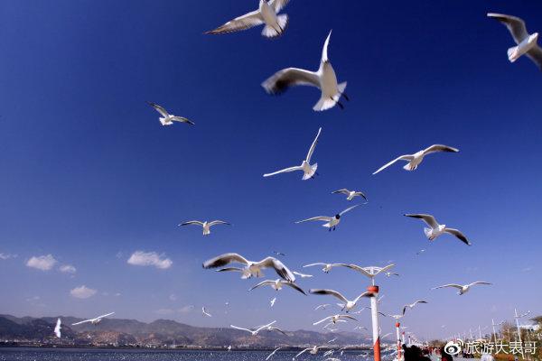 云南旅游景点、美食全攻略(珍藏版),丽江旅游攻略-马蜂窝攻略陵水海南图片