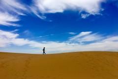 踏过无垠草原,穿越茫茫沙丘~这个夏天带娃去看不一样的风景(附响沙湾莲花度假酒店详细攻略)