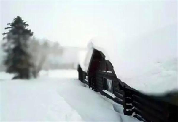 【小天独家】长白山 | 我千里来踏雪! - 达人J - 达人J · 365乐游日记