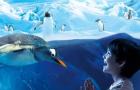 曼谷 暹罗海洋世界/海洋馆/海底世界·现场可定(扫码换票+无需等待+即买即用)24小时自动出票·亲子行程