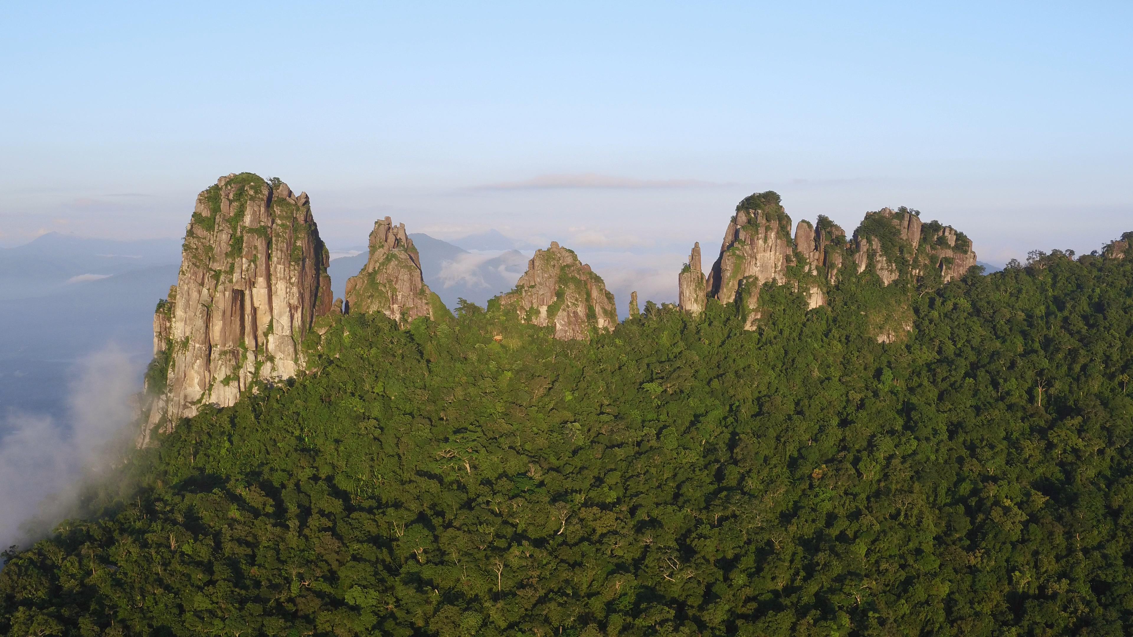 海南保亭七仙岭温泉国家森林公园门票