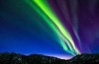 阿拉斯加旅游北极圈+追寻北极光一日游 观费尔班克斯育空河大油管