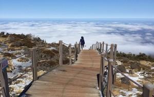 【西归浦图片】疼痛的济州岛之旅—附汉拿山登顶攻略