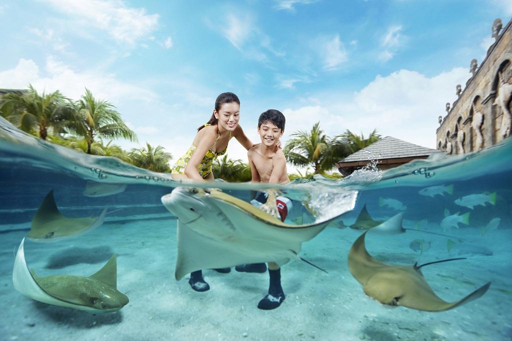 新加坡圣淘沙水上探险乐园门票 海豚园电子票(出票速度快 能与海豚