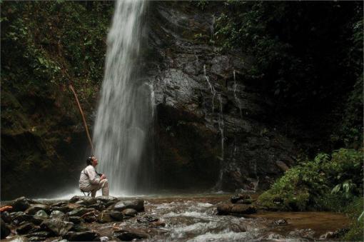 云雾森林体验之旅3天2晚全包行程 Mashpi 云雾森林酒店