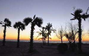【葫芦岛图片】日出日落看冰花
