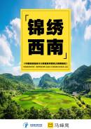 中国省域自由行大数据系列报告之西南地区