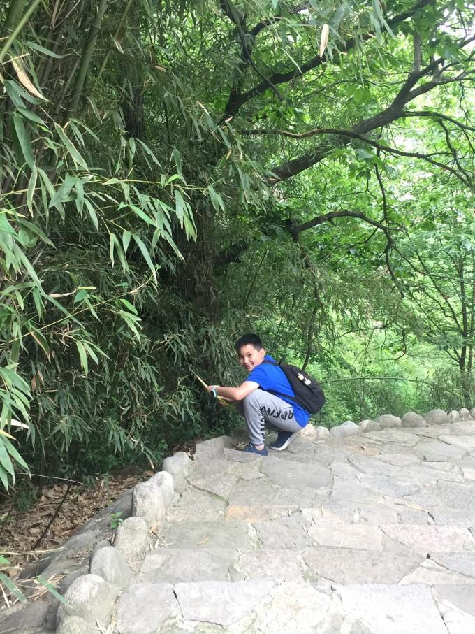 秦岭野生动物园攻略攻略新纪元2图片