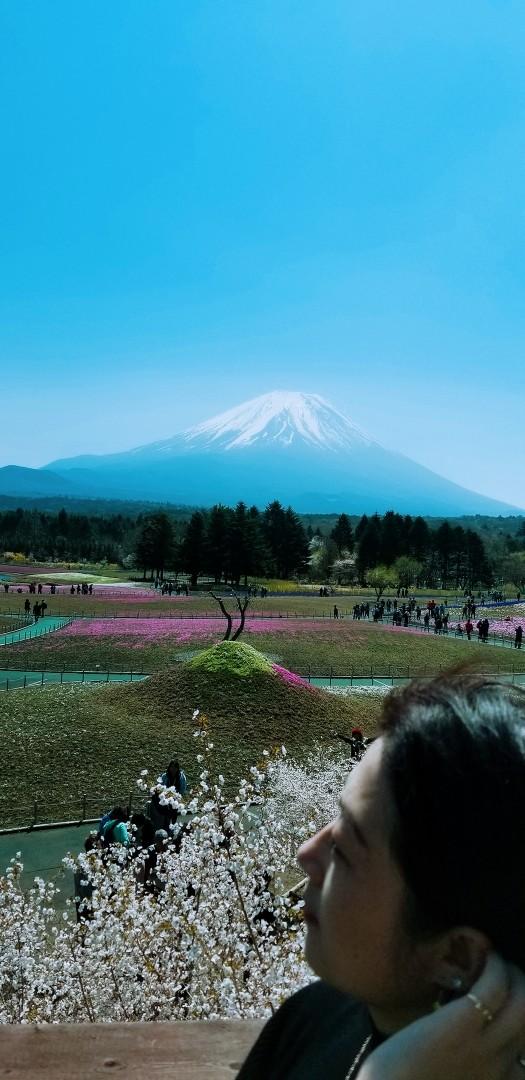 东京爱情故事.你的名字