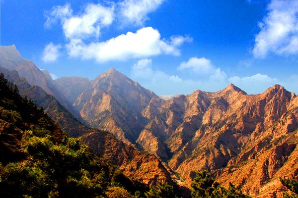贺兰山国家森林公园门票(贺兰山苏峪口)