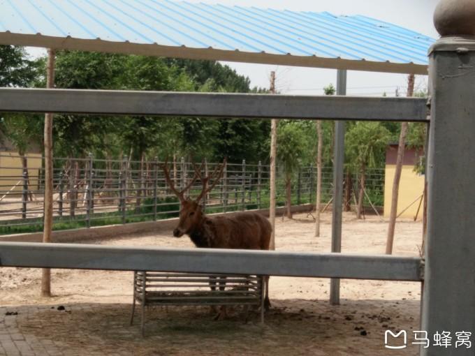 聊城野生动物园