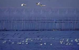 【丹阳图片】5.石臼湖