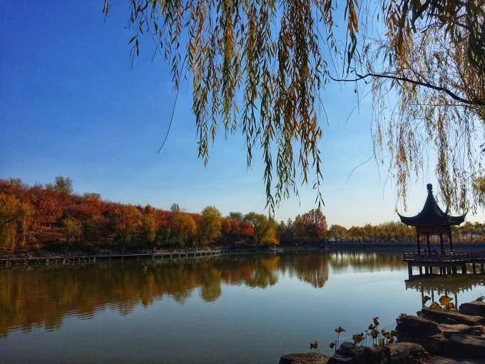 """【京城赏红叶】之""""北宫国家森林公园""""登山漫步"""