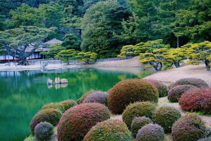 我的日本四国艺术之旅图片