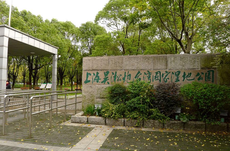 【上海】吴淞炮台湾湿地公园:品秋意、眺长江
