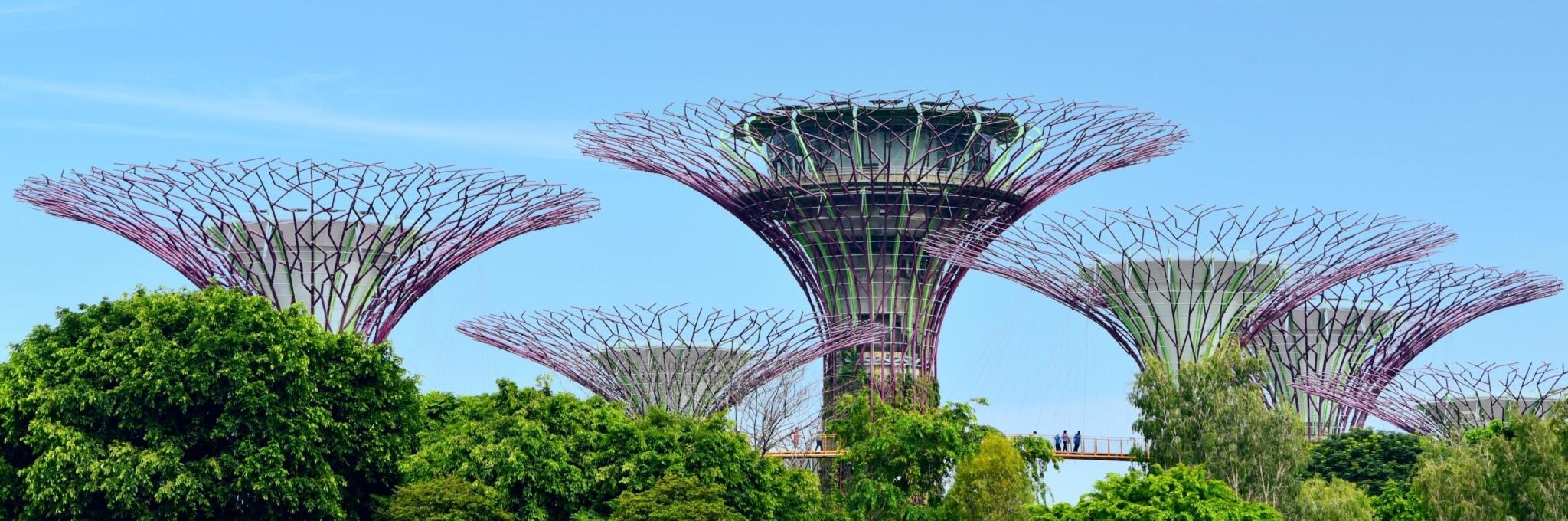"""从""""新""""出发,乐享狮城,新加坡自助游yabo88亚博官网"""