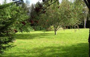 【瑞典图片】桃花源里瑞典国,住在花丛中