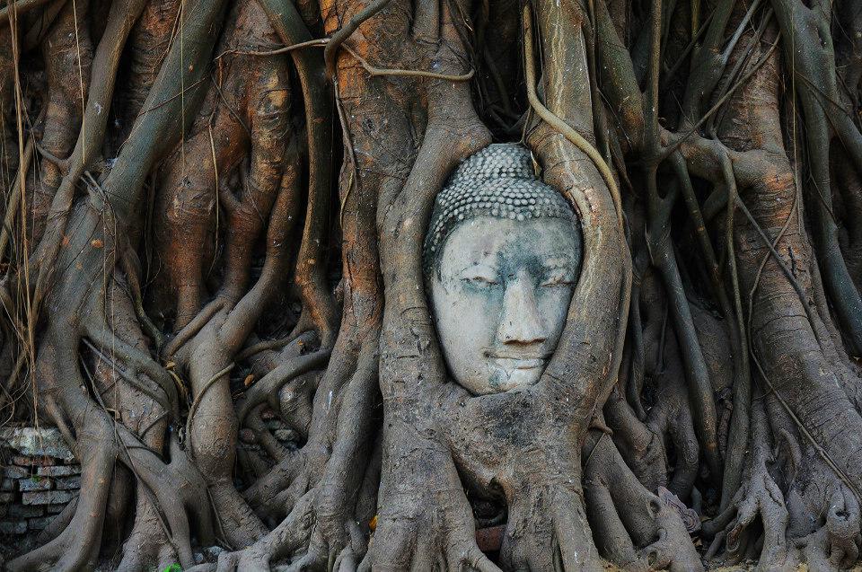 泰国,寺庙文化的国度