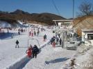 天津蓟州国际滑雪场(直通车)