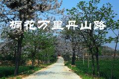 2014 沿黄河旅行日记