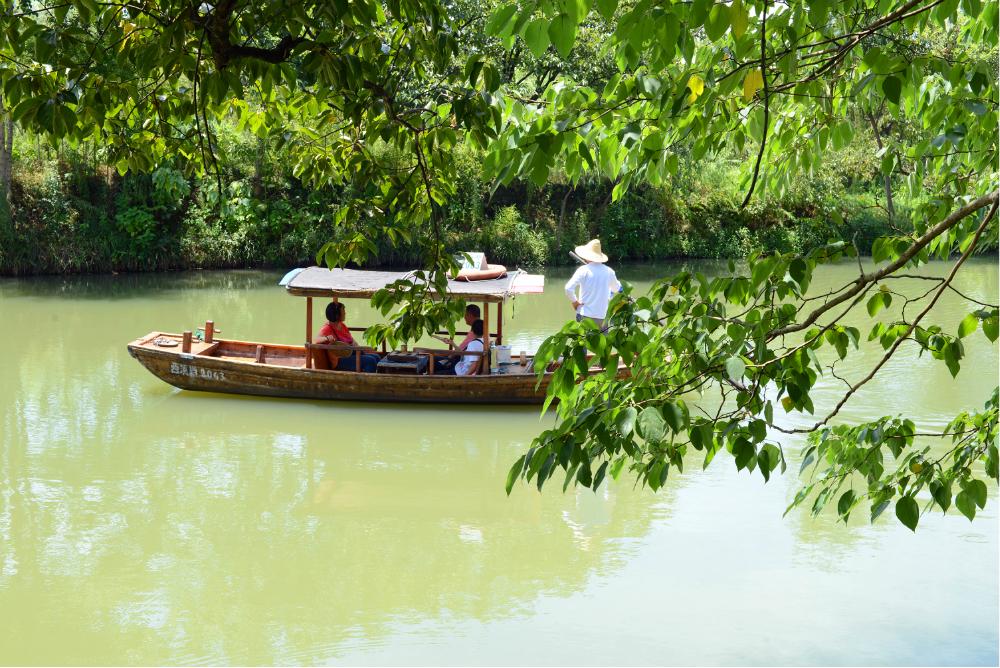 杭州西溪湿地摇橹船价格是多少,杭州西溪湿地摇橹船游玩攻略