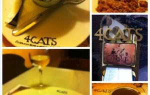巴塞罗那娱乐-四只猫