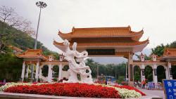 深圳景点-仙湖植物园