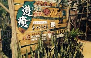 冲绳娱乐-琉球之风体验王国