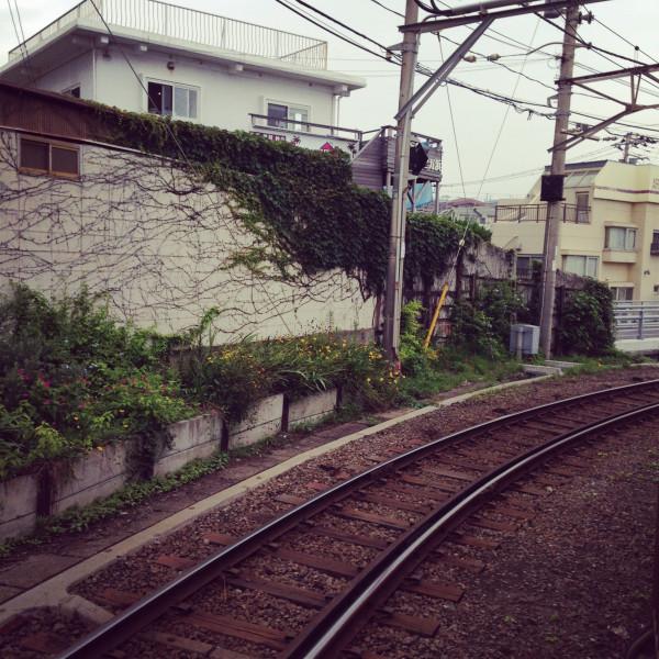 萌萌哒日本,十日浮光掠影(完)  房子是多种多样的,但精致可爱是一样的