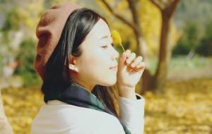 【富阳图片】【i-Fuyang】杭州富阳万市杨家村--最美银杏村
