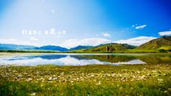 甘南景点-桑科草原