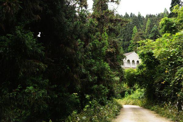 """""""大薤山风景区处于古隆中,武当山,神农架的黄金旅游线上,是鄂西生态文"""