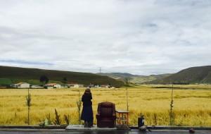 【门源图片】【无攻略随意游】重返青海 驶向最接近那一片天堂的净土