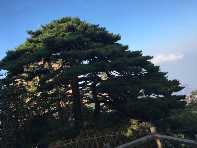 黄山--屯溪--千岛湖三日自驾游