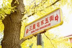 由秋入冬的我的故乡啊--北京三里屯东五街/后海/五道营