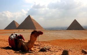 【埃及图片】埃及之旅(4)---金字塔、狮身人面像、博物馆