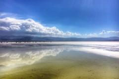 茶卡盐湖----美丽纯粹的第四站