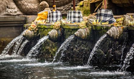 巴厘岛乌布一日游游圣泉寺 脏鸭餐 乌布集市皇宫 海神庙(天天出发/2人