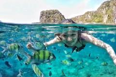 在上帝的鱼缸,嬉鱼逐浪(甲米皮皮岛游记,含大量水下攻略)
