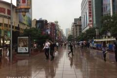 走过江南之上海