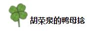 @胡荣泉的鸭母捻