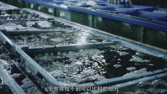 東京·美食物語 8