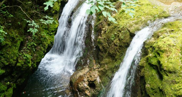 金丝峡国家森林公园- 森林旅游