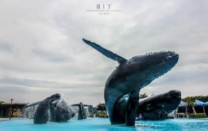 台湾娱乐-国立海洋生物博物馆